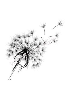 Your place to buy and sell all things handmade Dandelion Drawing, Dandelion Tattoo Design, Blowing Dandelion, Flower Tattoo Arm, Flower Tattoo Shoulder, Pen Tattoo, Flower Pens, Pen Art, Art Drawings