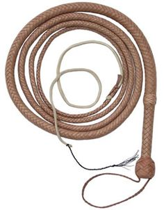 Indiana Jones 10' Bullwhip from the same business that made the whips used in the movies.