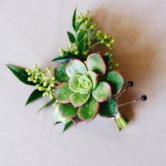 Nothing says like this adorable boutonnière! 🌵 Want us to make some of these cuties for YOUR wedding? Schedule a consultation today! Floral Wedding, Wedding Flowers, Wedding Schedule, Our Wedding, Succulents, Plants, Menswear, Heart, Wedding Timeline