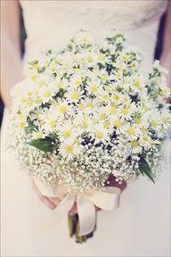 Shasta daisies + babys breath love the combo