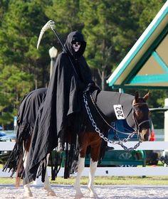 Grim reaper horse costume