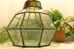 Stained Glass Plant Terrarium with Removable Lid