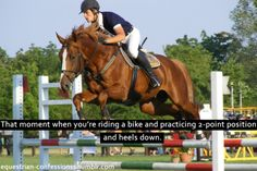 I did this all the time when i was little and cross country courses too! With stairs and wood on the ground :) Equine Quotes, Equestrian Quotes, Equestrian Problems, Pretty Horses, Horse Love, Beautiful Horses, Horse Riding Quotes, Horse Riding Tips, Reining Horses