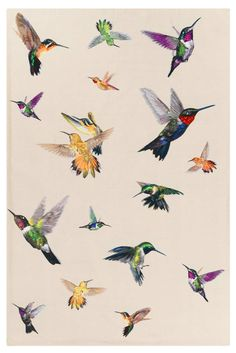 Hummingbird Ivory - Animal print - Contemporary Rugs - Shop Collection The Rug Company Textures Patterns, Print Patterns, Pattern Print, Vogel Illustration, Science Illustration, Hummingbird Tattoo, Tattoo Bird, Hummingbird Wallpaper, Hummingbird Sketch