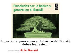 [Get] Arte Bonsai - http://www.vnulab.be/lab-review/arte-bonsai-2 ,http://s.wordpress.com/mshots/v1/http%3A%2F%2Fforexrbot.artebon.hop.clickbank.net