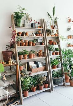 Simple and Impressive Tricks: Natural Home Decor Diy House Smells organic home decor feng shui offices.Organic Home Decor Rustic Plants simple natural home decor rustic kitchens.Natural Home Decor Diy Decoration.