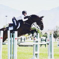 """I needed to make some money so I decided to jump Whispering Shadows in a competition! Won first so proud!"" Megan smiled"