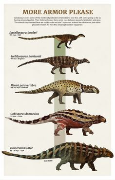 prehistoric animals Evolution Series: More Armor Please Ankylosaurs were some of the most well-protected vertebrates to ever live, with some going so far as having armored eyelids. Prehistoric Wildlife, Prehistoric Dinosaurs, Prehistoric World, Prehistoric Creatures, Dinosaur History, Dinosaur Art, Dinosaur Crafts, Dinosaur Skeleton, Dinosaur Illustration