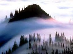 olympic national park - Google Search