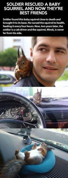 cool-squirrel-soldier-best-friends