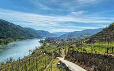 Wandern | Wachau Inside Kirchen, Vineyard, Mountains, Nature, Blog, Travel, Outdoor, Hiking, Viajes