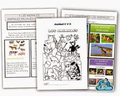 RECURSOS PRIMARIA | Unidad didáctica sobre los animales ~ La Eduteca