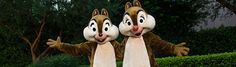 Chip 'n' Dale stand with their arms open wide