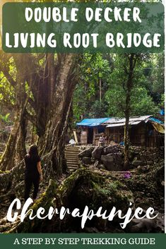 Here's your step by step guide of how to reach the double decker root bridge in Cherrapunjee. This guide will have you covered in what to expect! India Travel Guide, Asia Travel, Travel Info, Travel Plan, Travel Tips, Places To Travel, Travel Destinations, Northeast India, Vacation Trips
