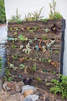Kent Heartstrings: Pallet Vertical Succulent Garden // DIY