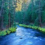 Metolius River in Autumn, Camp Sherman, Oregon