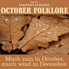 October 2019 monthly tips, recipes, gardening, folklore, and more from The Old Farmer's Almanac. Old Wives Tale, Wives Tales, Weather Quotes, Nature Secret, Weather Predictions, Old Farmers Almanac, Autumnal Equinox, Old Wife, Holidays 2017