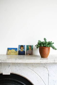 Urban Jungle Bloggers | Donkey's tail or Burro's tail plant | House plant | Marble fireplace