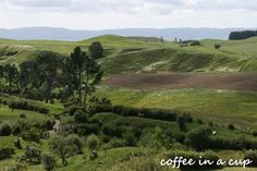 the hobbiton movie set Hobbit Land, The Hobbit, Hobbit Door, I Love The Lord, Tour Guide, New Zealand, My House, Behind The Scenes, Journey