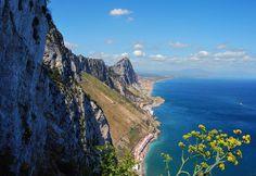 Felsen von Gibraltar; dort leben die seltenen Berberaffen