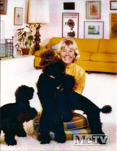 0 doris day with dogs