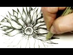 Pen and Ink Drawing Tutorial How to Draw a Sunflower - Inktober - YouTube