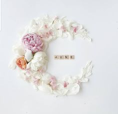 Birthday Month Dp, Corona Floral, Hello June, Wreath Watercolor, Months In A Year, Scrabble, Bud Vases, Flower Crafts, Flower Crown