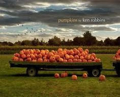 Follows the life cycle of the pumpkins that become so ubiquitous as the fall season rolls around.