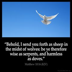 """Matthew 10:16 """"Behold, I send you forth as sheep in the midst of wolves: be ye therefore wise as serpents and harmless as doves."""" Via http://ift.tt/1Pg1wY9"""