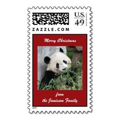 Merry Christmas Postage Stamp, Giant Panda - This cheery postage stamp, with my original photo of a cute giant panda bear, is a wonderful way to send your Christmas holiday greeting cards! Matching greeting cards, wrapping paper, and gift items are available in my zazzle shop, http://www.zazzle.com/SocolikCardShop*. Photograph was taken in Chengdu, China. All Rights Reserved © 2013 Alan & Marcia Socolik #Christmas #Pandas