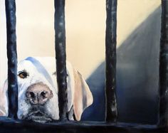 """Nothing Doing"" By Bridget Askew Artist, Painting, Animals, Animales, Animaux, Artists, Painting Art, Paintings, Animal"