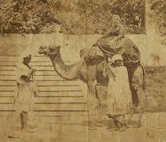 Alexine Tinne (?) in the Sahara