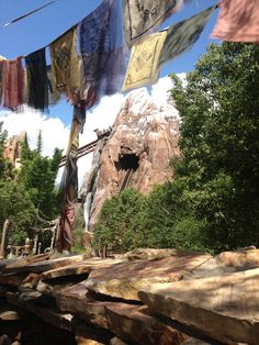 Expedition Everest. LOVE THIS RIDE