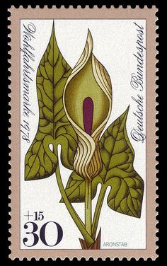 Arum, Series for social welfare 1978, flowers,Germany.Graphics by Heinz Schillinger