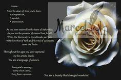 Rose Poems, Eternal Love, My Poetry, Aphrodite
