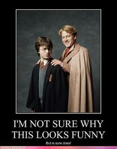 Haha! The look on Harry's face is awesome