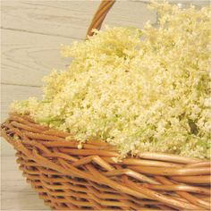 Elderflower, Winter Time, Diy Food, Preserves, Panna Cotta, Summertime, Food And Drink, Basket, Cool Stuff
