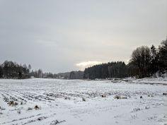 naturensdronning: Dagens utvalgte - 28. des 2015