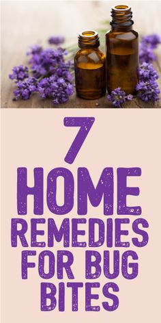 7 Home Remedies For Bug Bites