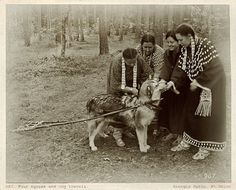 dog travois picture - Google Search