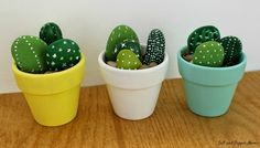 How to make cactus rocks | Craft projects for every fan!