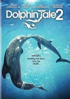 Dolphin tale 2. - Peabody Main