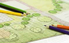 You'd like to learn how to draw landscape plans? This article aimed at beginning do-it-yourselfers shows you how and explains their usefulness.