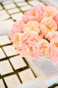 spray roses, garden roses, ranunculus and peonies via SMP.