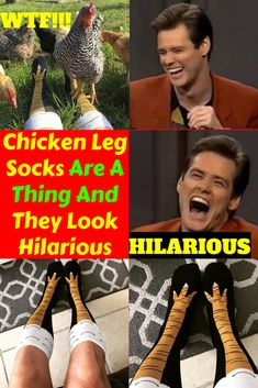 Chicken Leg Socks Are A Thing And They Look Hilarious Pics) Quick Draw, Chicken Legs, Workplace, Hilarious, Jokes, Entertaining, Chicken Drumsticks, Hilarious Stuff, Laughing So Hard