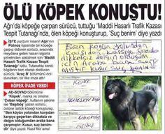 komik haber Comedy Zone, Dead Dog, Hobbies For Men, Funny Pictures, Reading, Turkey, Random, Memes, Disney
