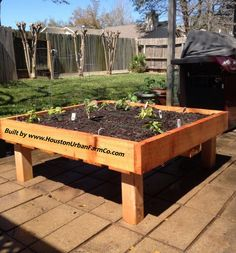 Square Foot Gardening On Pinterest Squares Gardens And