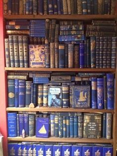 Gorgeous collection of old blue books.