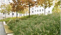 À l'Office fédéral des Affaires étrangères, à Berlin, Hahn Hertling Von Hantelmann a créé un jardin qui est composé d'une grande pastille bordée de béton v
