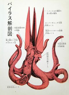 Viras's features include a spike-shaped head capable of piercing through a meter of steel, a brain with an IQ of 2500, organs for producing a force field and controlling the minds of others, tentacles that are 10,000 times stronger than an elephant's trunk and which can emit powerful beams for space travel, and organs to break down cell tissue and control metamorphosis (for creating its human disguise).